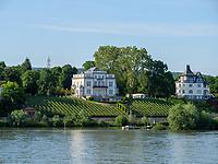 Villa und Weinberg, Walluf, Hessen, Deutschland, Europa<br /> Manor and vineyard, Walluf, Hesse, Germany, Europe