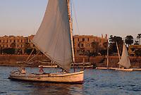 - felucas in navigation on the Nilo river near Luxor....- feluche in navigazione sul fiume Nilo nei pressi di Luxor
