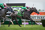 ELMONT, NY - JUNE 11: Pure Sensation, #12, ridden by Jose Ortiz, wins the Jaipur Invitational Stakes on Belmont Stakes Day before the 148th Belmont Stakes on June 11, 2016 in Elmont, New York. (Photo by Samantha Bussanich/Eclipse Sportswire/Getty Images)