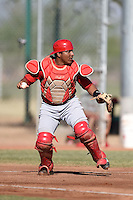 Cincinnati Reds catcher Chadwick Tromp (66) during an Instructional League game against the Kansas City Royals on October 16, 2014 at Goodyear Training Complex in Goodyear, Arizona.  (Mike Janes/Four Seam Images)