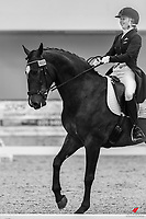 NZL-Anya Noble rides Geronimo Star. Andrea Raves Super 5 League -Test Int B. 2020 NZL-Bates Saddles NZ Dressage Championships. NEC Taupo. Friday 20 November 2020. Copyright Photo: Libby Law Photography