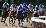 June 7, 2014: Fiftyshadesofgold, ridden by Mike E. Smith, leads the field in the 84th running of The TVG Acorn on Belmont Stakes Day in Elmont, NY. Jon Durr/ESW/CSM
