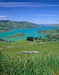 New Zealand, South Island, Banks Peninsula: View over Akaroa Bay | Neuseeland, Suedinsel, Banks Halbinsel: Akaroa Bay