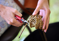 Pictured: Willow weaving Saturday 13 August 2016<br />