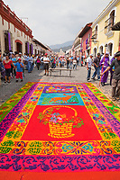 Antigua, Guatemala.  An alfombra (carpet) of colored sawdust decorates the street in advance of the passage of a procession during Holy Week, La Semana Santa.  A worker sprays a fine mist on the alfombra, to keep the colors brilliant and to prevent the dry sawdust from blowing away.  The alfombra will be finished only a couple of hours before the passage of the procession, after which the remains will be quickly swept away by municipal street sweepers.