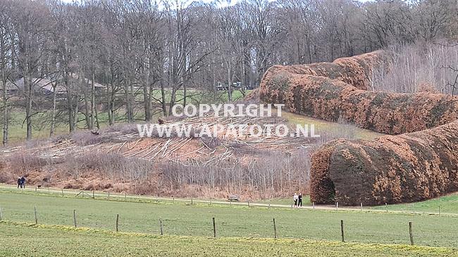 Arnhem, 2020<br />De groen Bedstede, de Groene Bedstee<br />Foto: Sjef Prins - APA Foto