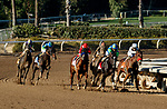ARCADIA, CA  DEC 26: The field entering the turn of the San Antonio Stakes (Grade ll) on December 26, 2020 at Santa Anita Park in Arcadia, CA.<br />   (Photo by Casey Phillips/Eclipse Sportswire/CSM.)