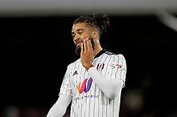 21st September 2021; Craven Cottage, Fulham, London, England; EFL Cup Football Fulham versus Leeds; Michael Hector of Fulham