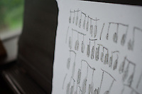 Sheet, Music, composition, Max, Song, Nana, House, Castine, Maine, US, July 2013