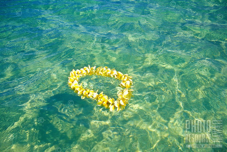 A beautiful yellow plumeria lei gently floats in Hawaii's turquois blue waters.