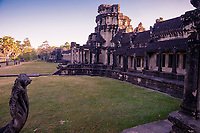 Cambodia, Angkor Wat, Early Morning.  Naga in Lower Left.