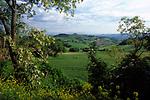 ITA, Italien, Marken, Landschaft im Parco Nazionale del Conero   ITA, Italy, Marche, landscape at Parco del Conero