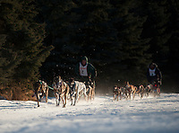 Mushers vie for the lead during the Alaskan Sled Dog & Racing Association Exxon Mobile Open in Anchorage, Alaska.
