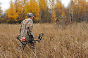 00105-045.15 Bowhunting: Archer wearing Realtree AP is hunting in lowland containing tamarack during fall.  Hunt, deer, swamp.  H3R1