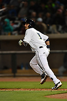 Shortstop Michael Paez (3) of the Columbia Fireflies watches his role run in a game against the Augusta GreenJackets on Opening Day, Thursday, April 6, 2017, at Spirit Communications Park in Columbia, South Carolina. Columbia won, 14-7. (Tom Priddy/Four Seam Images)
