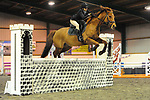Stapleford Abbotts. United Kingdom. 28 October 2018. Class 9. Christmas Extravaganza showjumping. Brook Farm training centre. Stapleford Abbotts. Essex. UK. 28/10/2018.  MANDATORY Credit Ellen Szalai/Sport in Pictures - NO UNAUTHORISED USE - 07837 394578