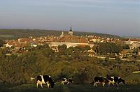 Europe/France/Bourgogne/21/Côte d'Or/Flavigny-sur-Ozerain: Le village