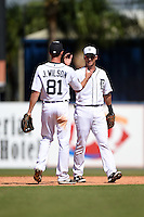 Detroit Tigers infielder Andrew Romine (27) shakes hands with Josh Wilson (81) after the final out of a Spring Training game against the Miami Marlins on March 25, 2015 at Joker Marchant Stadium in Lakeland, Florida.  Detroit defeated Miami 8-4.  (Mike Janes/Four Seam Images)
