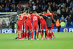 UEFA European Championship at Cardiff City Stadium - Wales v Cyprus : <br /> Walews players celebrating their win at full time.