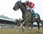 Fort Larned (no. 9), ridden by Brian Hernandez Jr. and trained by Ian Wilkes, wins the 85th running of the grade 1 Whitney Invitational Handicap for three year olds and upward on August 4, 2012 at Saratoga Race Track in Saratoga Springs, New York.  (Bob Mayberger/Eclipse Sportswire)