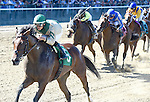 Scenes from around the track on Jockey Club Gold Cup Day on September 27, 2014 at Belmont Park in Elmont, New York.  (Bob Mayberger/Eclipse Sportswire)