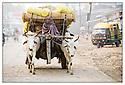Inde<br /> Varanasi<br /> Commerçant allant au marché.
