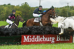 1 October 2011: Rainiero and Matt McCaroron win the Bon Nouvel hurdle race at Virginia Fall Races in Middleburg, Va. Rainiero is owned by Augustine Stables and trained by Richard Valentine. Susan M. Carter/Eclipse Sportswire