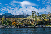 Looking across the Yellowstone River into Yellowstone Park mountain landscapes