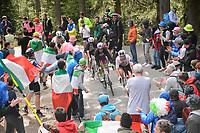 29th May 2021;  Giro D italia stage 20 Valle Spluga to Alpe Motta; Bardiani - Csf Faizane 2021, Ag2r - Citroen Zana, Filippo Gougeard, Alexis arrive in  Alpe Motta Alpe Motta