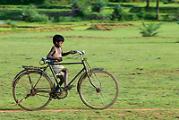 INDIA Jharkhand, village Sarwan, Adivasi children tribe Santhal , boy on large bicycle / INDIEN Jharkand , Dorf Sarwan , Adivasi Kinder , tribe Santhal - Junge auf zu grossem Fahrrad