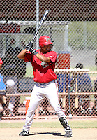 Luis Diaz / Arizona Diamondbacks 2008 Instructional League..Photo by:  Bill Mitchell/Four Seam Images