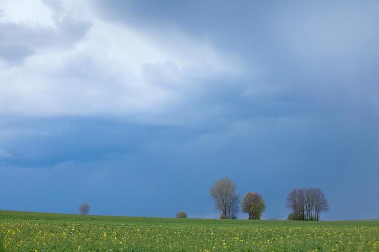 Europa, DEU, Deutschland, Rheinland-Pfalz, Terrassenmosel, Untermosel, Lehmen-Moselsürsch, Typische Landschaft, Regen, Regenwetter, Wolken.  Kategorien und Themen, Natur, Umwelt, Landschaft, Jahreszeiten, Stimmungen, Landschaftsfotografie, Landschaften, Landschaftsphoto, Landschaftsphotographie, Wetter, Himmel, Wolken, Wolkenkunde, Wetterbeobachtung, Wetterelemente, Wetterlage, Wetterkunde, Witterung, Witterungsbedingungen, Wettererscheinungen, Meteorologie, Bauernregeln, Wettervorhersage, Wolkenfotografie, Wetterphänomene, Wolkenklassifikation, Wolkenbilder, Wolkenfoto<br /> <br /> [Fuer die Nutzung gelten die jeweils gueltigen Allgemeinen Liefer-und Geschaeftsbedingungen. Nutzung nur gegen Verwendungsmeldung und Nachweis. Download der AGB unter http://www.image-box.com oder werden auf Anfrage zugesendet. Freigabe ist vorher erforderlich. Jede Nutzung des Fotos ist honorarpflichtig gemaess derzeit gueltiger MFM Liste - Kontakt, Uwe Schmid-Fotografie, Duisburg, Tel. (+49).2065.677997, archiv@image-box.com, www.image-box.com]