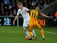 Sam Clucas of Swansea City (L) moves to avoid Anthony Knockaert of Brighton during the Premier League match between Swansea City and Brighton and Hove Albion at The Liberty Stadium, Swansea, Wales, UK. Saturday 04 November 2017