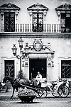 Horse drawn Cart in front of the Town Hall of Palma de Mallorca, Balearic Islands, Spain