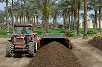 EGYPT, Bilbeis, Sekem organic farm, preparing of organic compost for desert farming, machine for turning the compost / AEGYPTEN, Bilbeis, Sekem Biofarm Herstellung von Kompost fuer Landwirtschaft in der Wueste