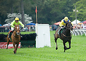 Country Cousin, right, scoots away from Decoy Daddy after the last in the featured Imperial Cup.