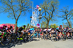 Riders climb the brutal Mur de Huy during La Fleche Wallonne 2018 running 198.5km from Seraing to Huy, Belgium. 18/04/2018.<br /> Picture: ASO/Gautier Demouveaux | Cyclefile <br /> <br /> All photos usage must carry mandatory copyright credit (© Cyclefile | ASO/Gautier Demouveaux)