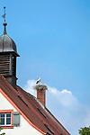 Deutschland, Bayern, Mittelfranken, Merkendorf: Storchennest auf der Zehntscheune (Heimatmuseum), einem ehemaligen herrschaftlichen Getreidespeicher am Marktplatz | Germany, Bavaria, Middle Franconia, Merkendorf: stork's nest at museum of local history at Market Square