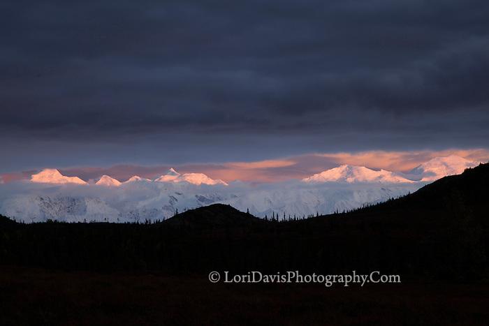Violet clouds fall over Denali range at sunset