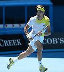 Ferrer, David (ESP)