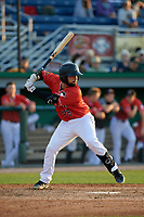 Batavia Muckdogs Michael Hernandez (29) at bat during a NY-Penn League game against the Williamsport Crosscutters on August 25, 2019 at Dwyer Stadium in Batavia, New York.  Williamsport defeated Batavia 10-3.  (Mike Janes/Four Seam Images)