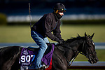 November 2, 2020: Dirty Dangle, trained by trainer Mark E. Casse, exercises in preparation for the Breeders' Cup Juvenile Turf Sprint at Keeneland Racetrack in Lexington, Kentucky on November 2, 2020. Alex Evers/Eclipse Sportswire/Breeders Cup