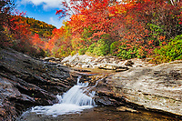 Autumn colors and Yellowstone Prong at Graveyard Fields