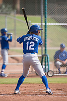 Kansas City Royals outfielder Marten Gasparini (12) at bat during an Instructional League game against the San Francisco Giants at the Giants Training Complex on October 17, 2017 in Scottsdale, Arizona. (Zachary Lucy/Four Seam Images)