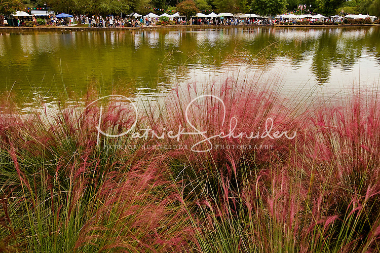 For more than four decades, Charlotte's annual Festival in the Park has brought music, art and fun to Charlotteans and visitors. The festival has been chosen as one of Sunshine Artists Magazine's 200 Best Festivals.