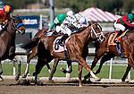 February 04, 2011. Immaculate by Distorted Humor breaks his maiden under jockey Corey Nakatani at Santa Anita Park in Arcadia, CA.