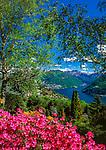 Schweiz, Tessin, Carona: Botanischer Park San Grato mit Blick auf den Luganer See | Switzerland, Ticino, Carona: Botanical Park San Grato with view at Lake Lugano