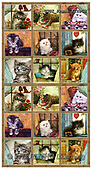 GIORDANO, CUTE ANIMALS, LUSTIGE TIERE, ANIMALITOS DIVERTIDOS, paintings+++++,USGIFRAMEKITSCN,#ac#, EVERYDAY,cats,puzzles