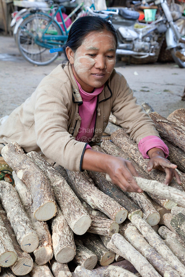 Myanmar, Burma. Thanaka Wood, for making cosmetic sunscreen.  Bagan Market.