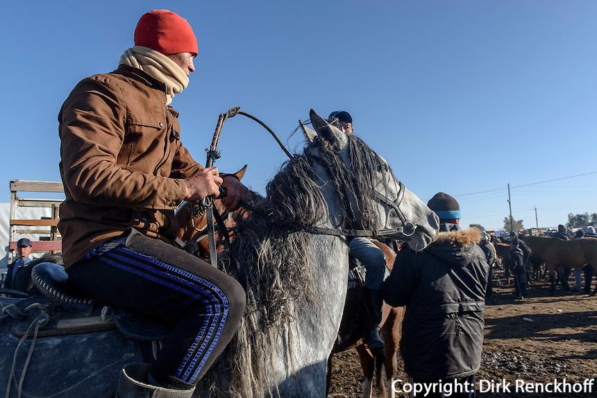 Wettkampf auf Pferden bei Viehmarkt in Karakol, Kirgistan, Asien<br /> riding competition at cattle market in Karakol, Kirgistan, Asia